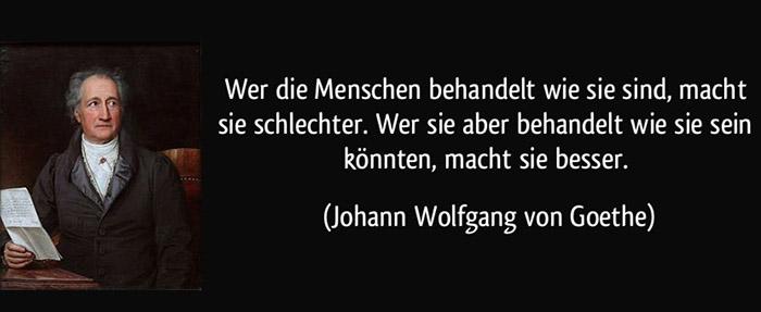 Potential und Wertschätzung - Zitat Goethe von gutezitate